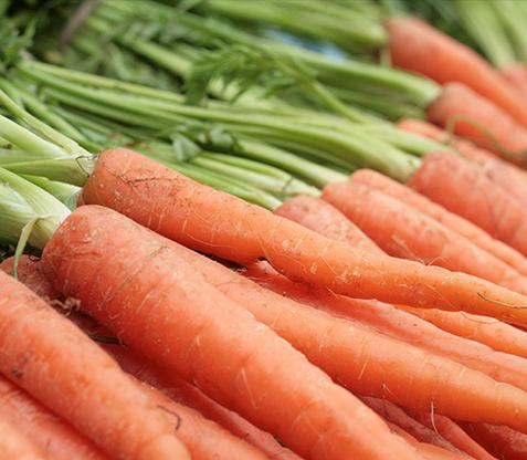 Danske gulerødder